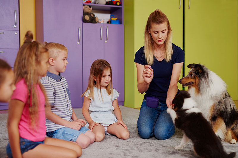 childcare courses in northern ireland